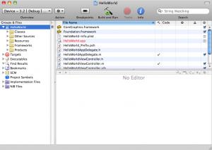 Xcode - Main Window